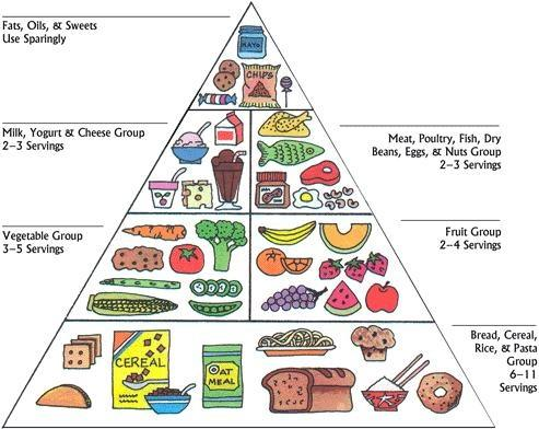 Food Pyramid from the 80s
